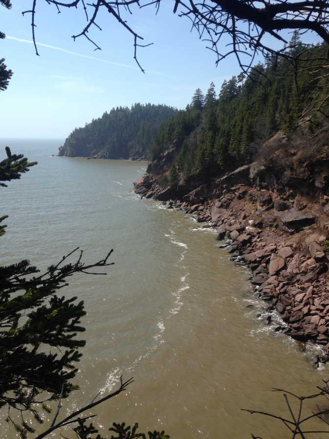 Bay of Fundy Shoreline