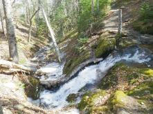 Herring Cove Falls
