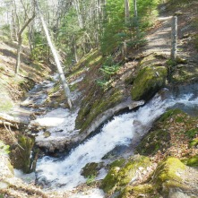 Herring Cove Falls